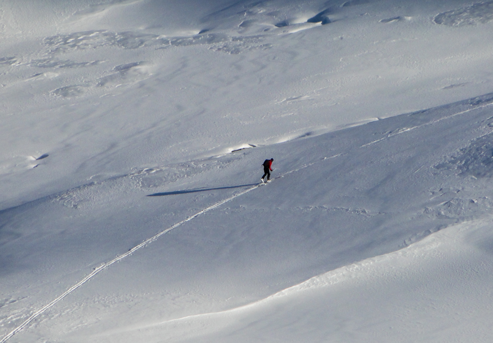 South Georgia, Antarctica, Skiing