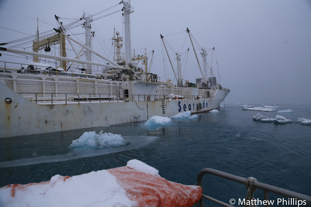 South georgia, Antarctica, ice and ships boats