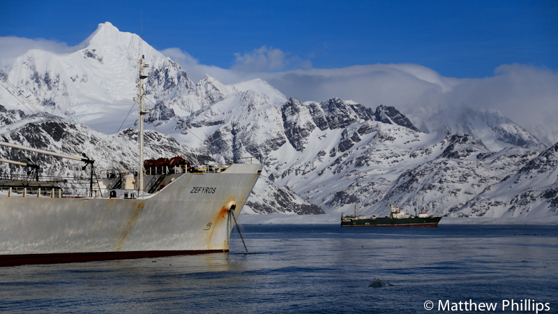 South Georgia, Antarctica, ships, Sugartop