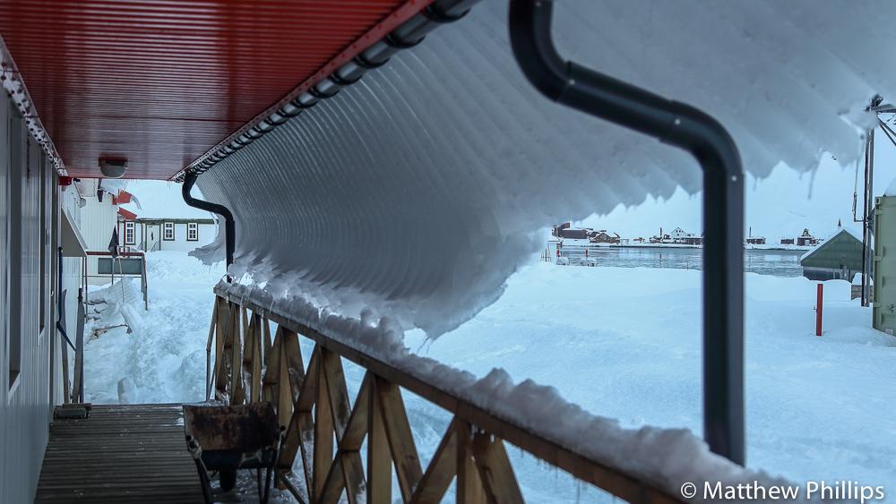 South Georgia, Antarctica -29